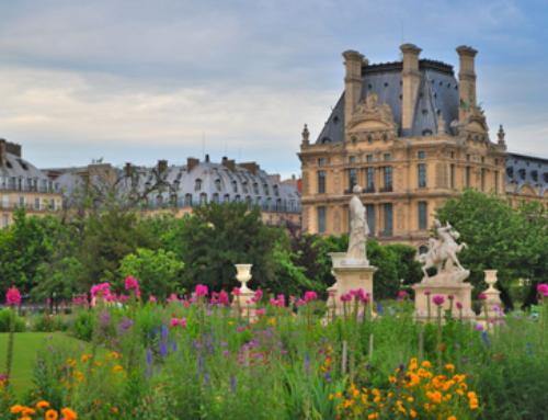 Pique-nique dans les Jardins des Tuileries